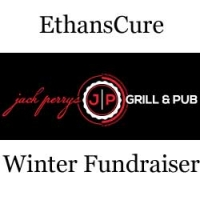 EthansCure Winter Fundraiser 2013